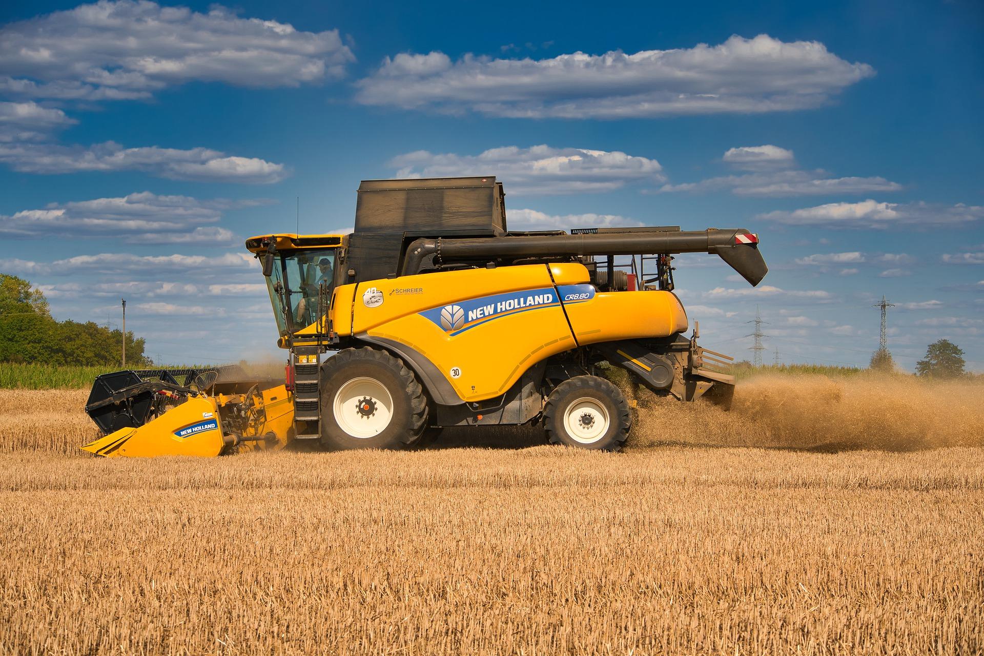 Recoltă grâu